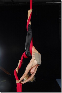 Aerial-Silks-2